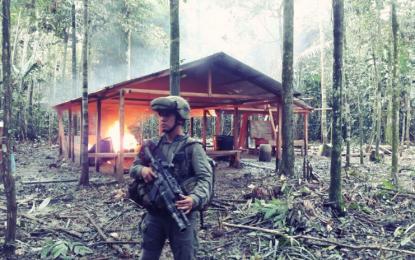 Destruyen 104 laboratorios de cocaína en Colombia